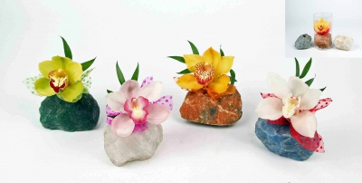 Natuursteen met 1 orchidee