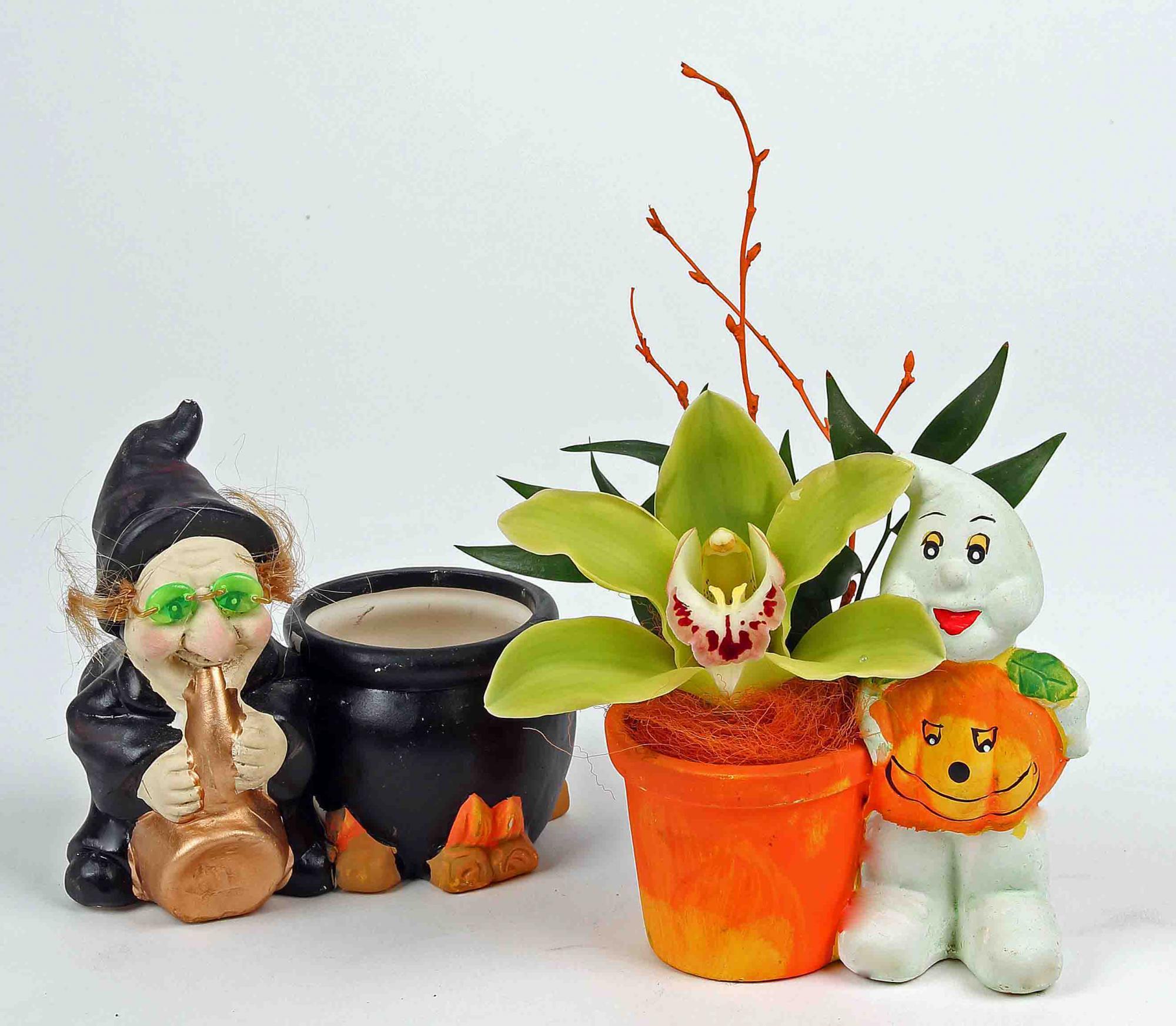 Halloween planter klein met 1 orchidee