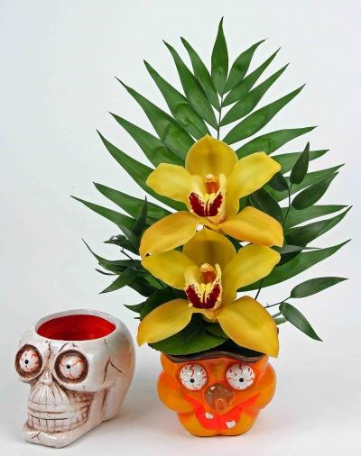 Griezelhoofd met 2 orchideeën
