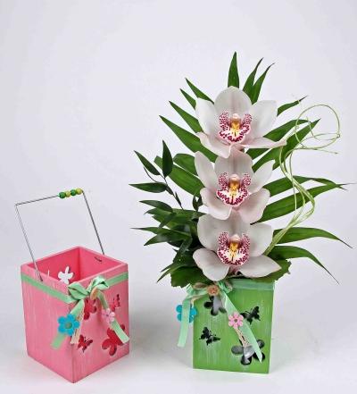 Houten windlicht pastel met 3 orchideeën