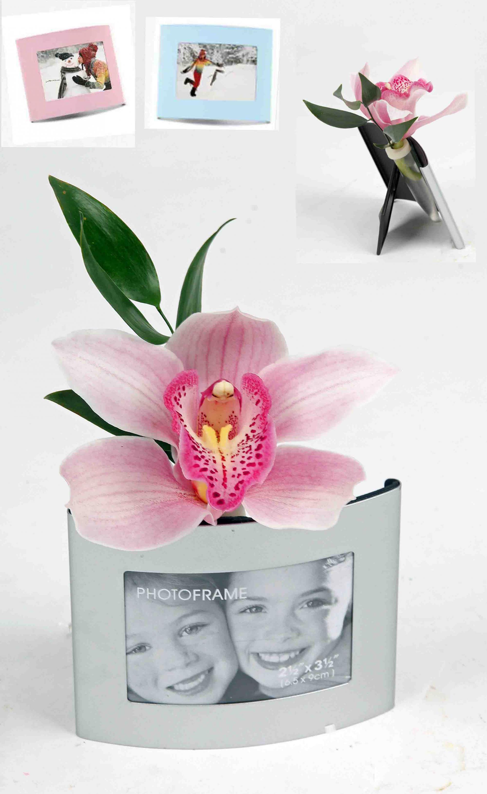 fotolijstje met 1 orchidee