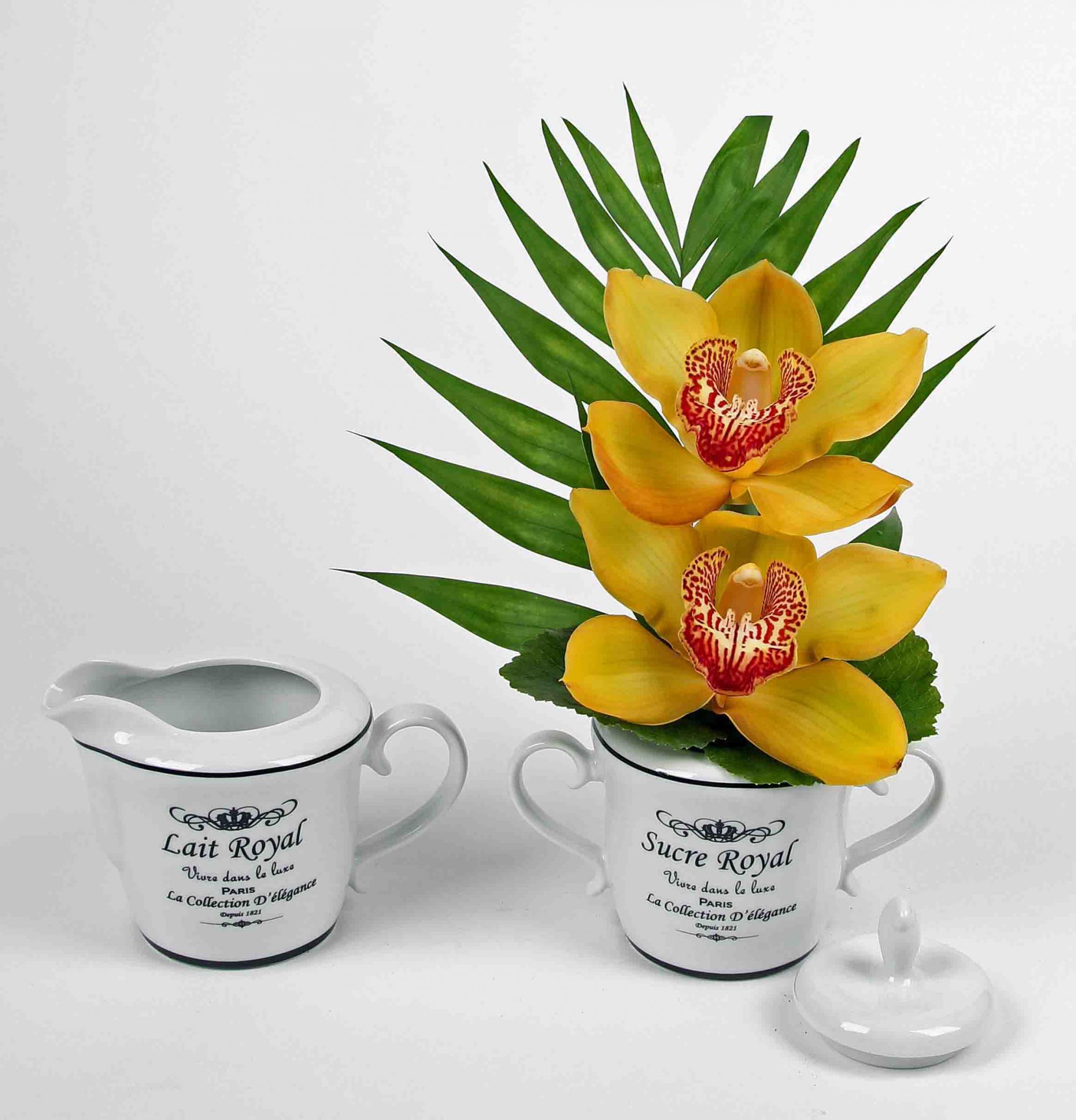 Melk en suiker kan met 2 orchideeën
