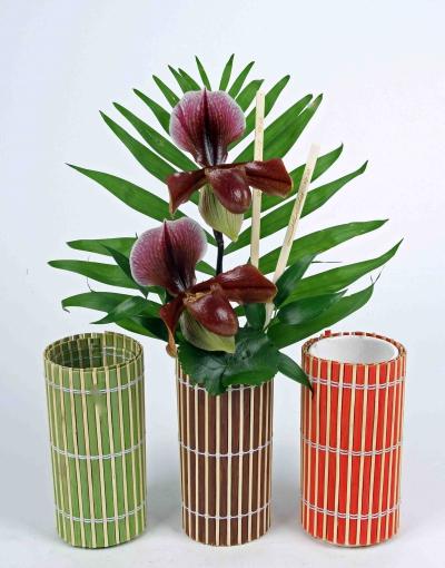 Bamboe vaas met paphiopedilum