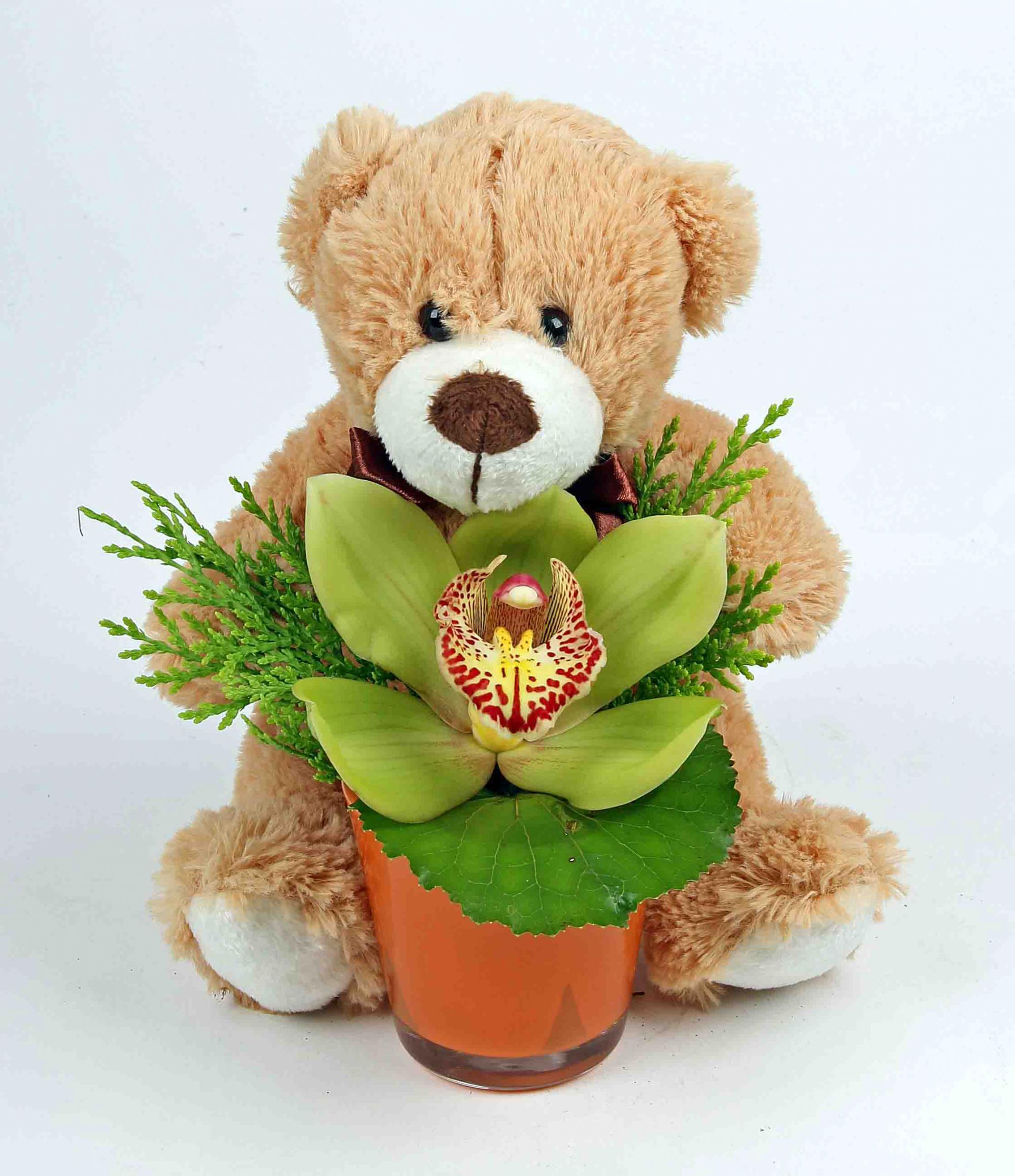 Glaasje met beer en 1 orchidee