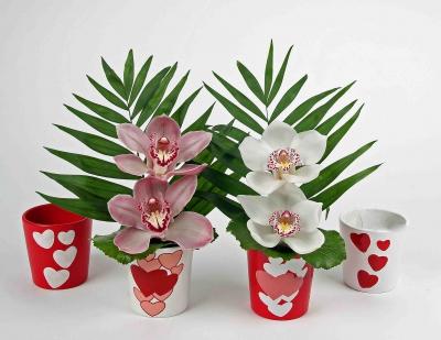 Hart pot assorti met 2 orchideeën